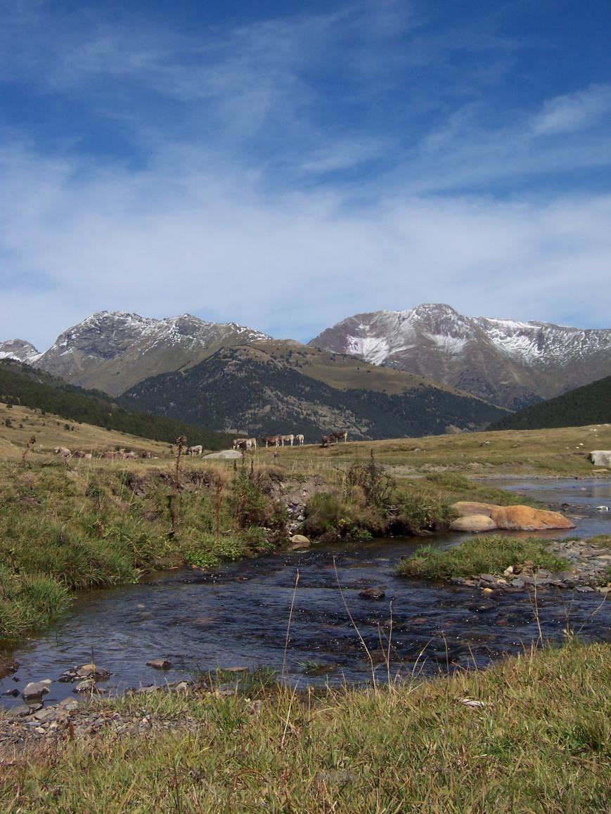 Y el dia y medio de excursión no dió para más. El Ruda se dirigia mansamente a Montgarri, y yo me dejé llevar por el Garona hasta que lo perdi de vista por Montrejeau, ya en tierra francesa.