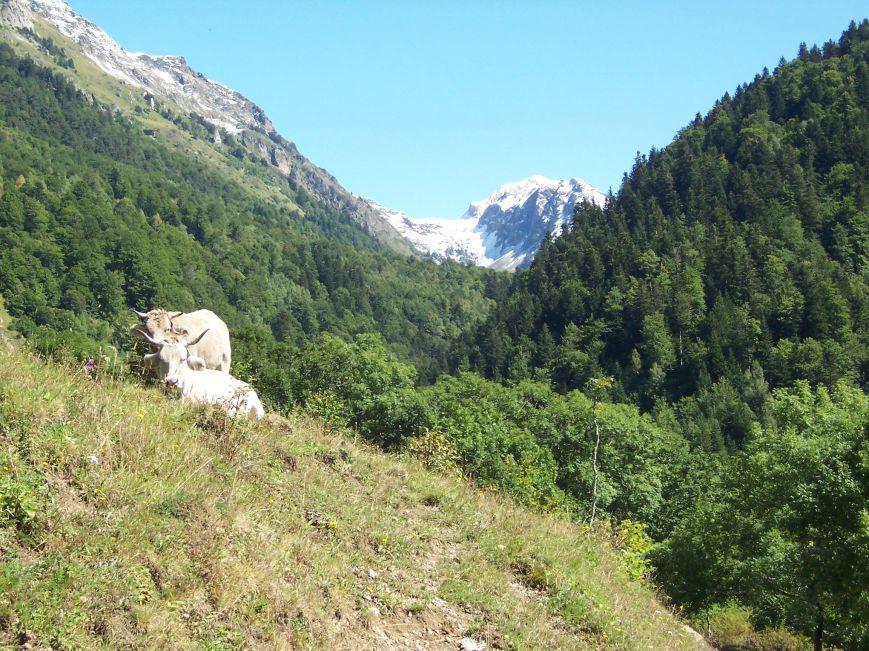 El valle de Varradós parece competir en belleza con la Artiga; También tributario del Garona, con la misma dirección N-EN, pero en la margen derecha del rio aranés. A poco de empezar a remontarlo, marcando la divisoria franco-española, se nos ofrece el Mauberme.
