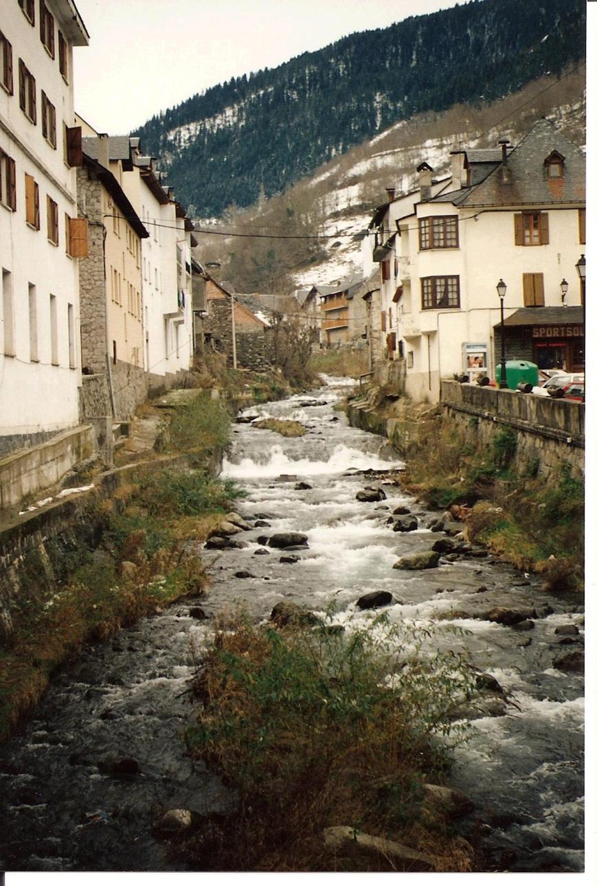 El rio Nere a su paso por Viella