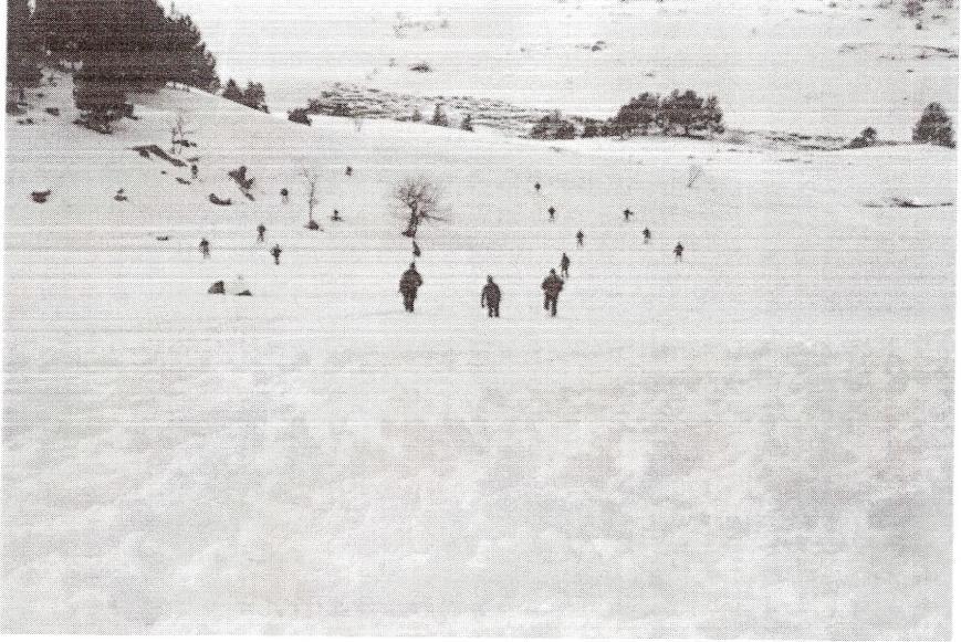 Despliegue de una sección en Orden de Combate en la nieve. Zona de Montgarri.