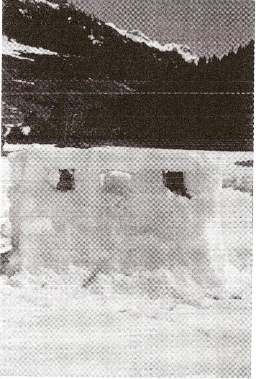 Construcción de posición defensiva en nieve. Zona de Montgarri.