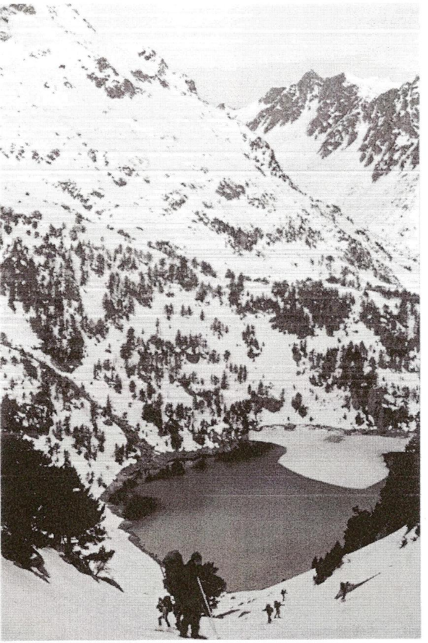 Práctica de vida y movimiento invernal. Lago de la Restanca.