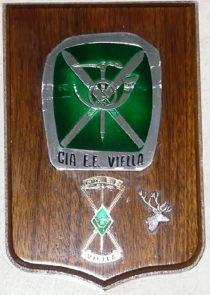 Metopa (Escudo Compañia Esquiadores Escaladores de Viella), junto con  nuestra insignia o diplomatura, la cual como podéis imaginar la  tengo en el salón de mi casa.