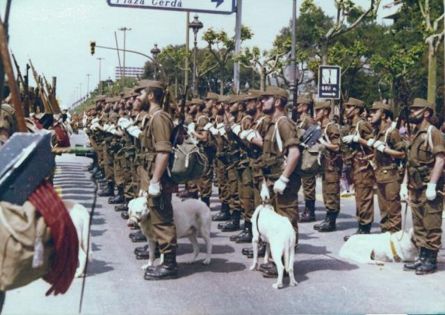 Desfile en Barcelona. El primer perro por la izda. es Satán. Ya veis que lleva bozal.